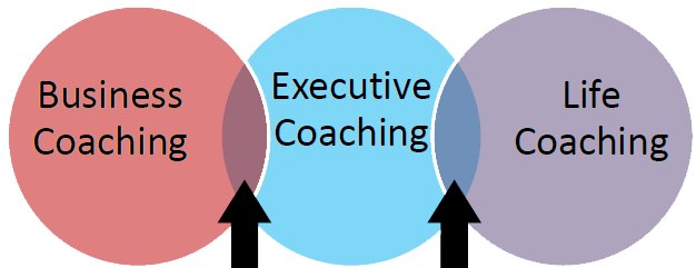 Coaching Types Overlap